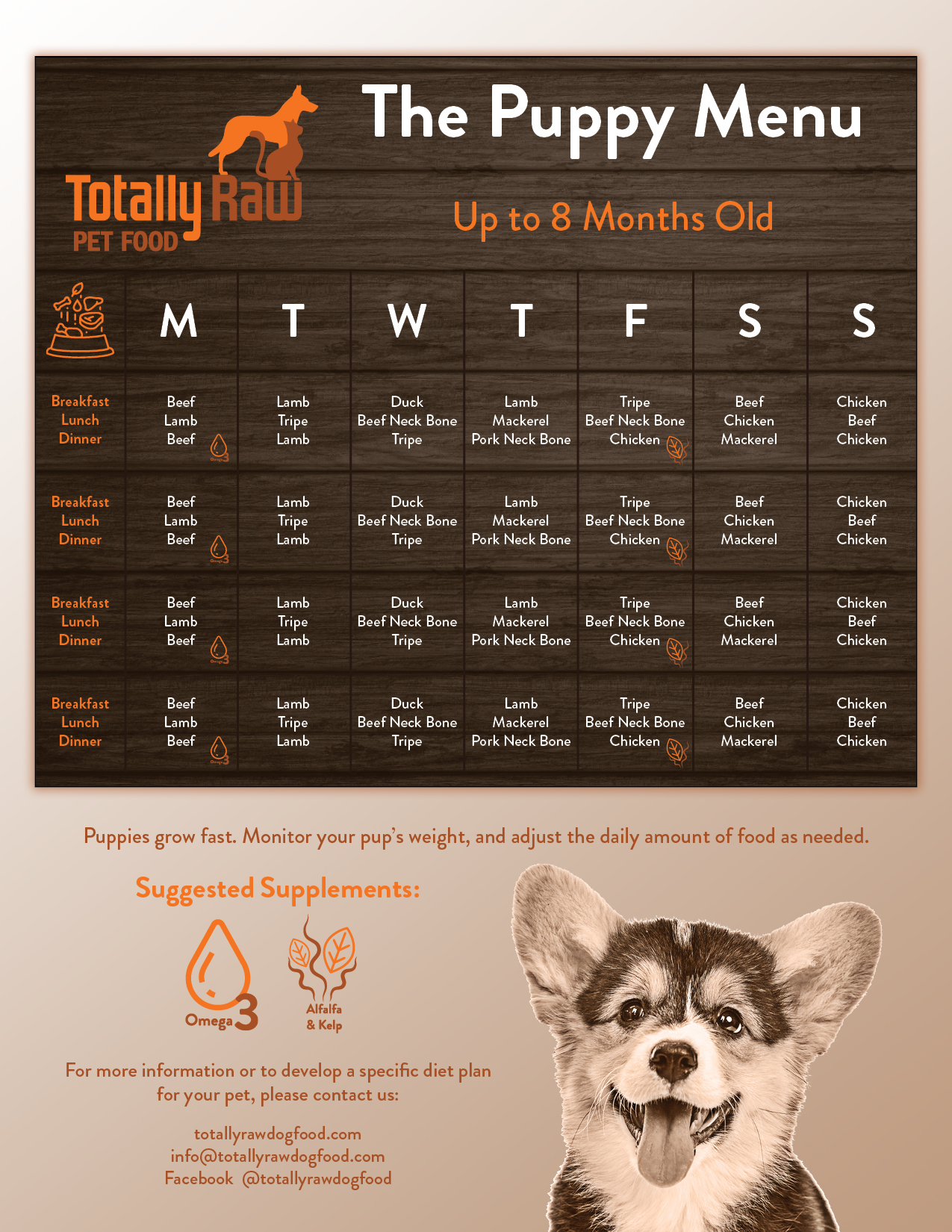 Puppy Sample Monthly Menu